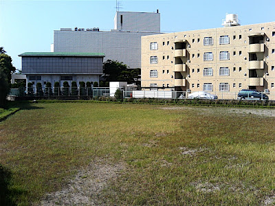 Campo de arroz 4 — 田んぼ 4 — Rice field 4