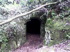 Galeria Antica: porta