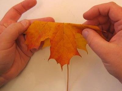 落ち葉を使ってバラを作る15のステップ