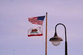 California Republic Bear Flag