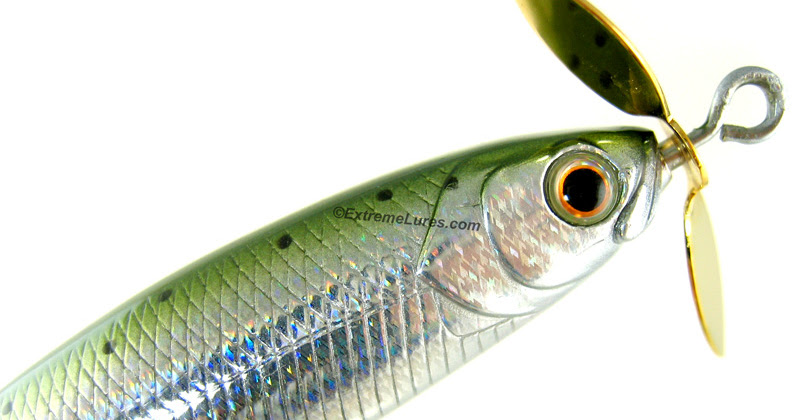 Rich 39 s bass fishing tackle blog lucky craft splash tail for Topwater bass fishing