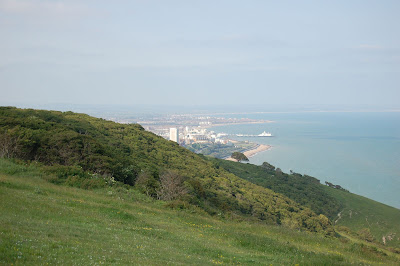 Eastbourne from Beachy Head
