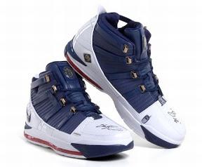 Lebron James Shoes 2007 37274 | RAMWEB