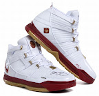 Autographed Nike LeBrons from Upper Deck