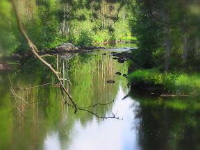Small creek in Eastern Finland
