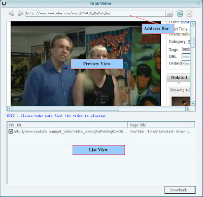 how to manually download youtube videos