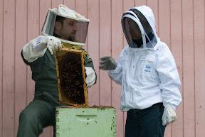 2007-03-Alyssa Bees 0027.jpg
