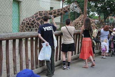 http://picasaweb.google.ru/remix07.ukraine/Zoo20070613FromAlexS/photo#5076531973943308050<br />