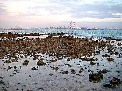 Cyrene Reef