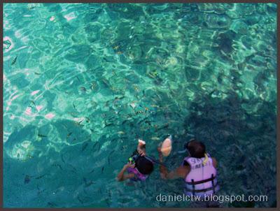 Marine Park fish