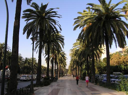 Paseo por Malaga Capital