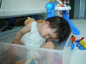 翎安睡在玩具箱