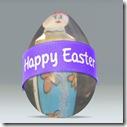 d29fbba76bf76db8_o egg
