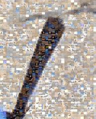 1-0-P2100094 Mosaic