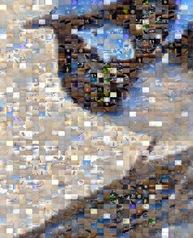 0-1-P2100094 Mosaic