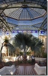 Palm Court Central sectionl