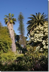 Botanic Garden: Leaning East & South