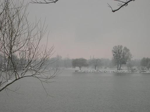 Lac de Viry Chatillon sous la neige