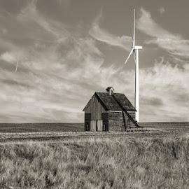 Never forgotten by Tammy Hatfield - Black & White Buildings & Architecture ( barn, corn, windmill, black and white, fields )