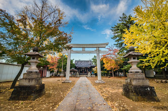 Photo: Colors burst in the Autumn around a small shrine in Matsudo, Japan