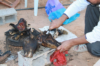 Photo: Preparation of goats head stew