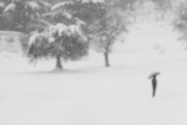 Se una notte d'inverno un viaggiatore... di killerqueen