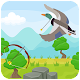 Duck Hunting 3D (game)