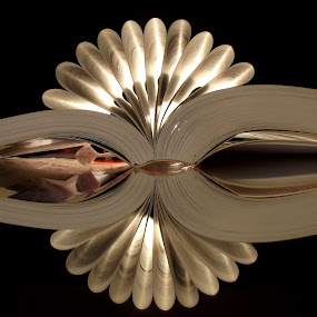 Mirror book by László Nagy - Products & Objects Education Objects