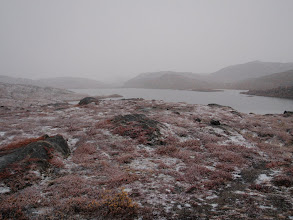 Photo: Greenland - Waking on Day 4 to fresh snow