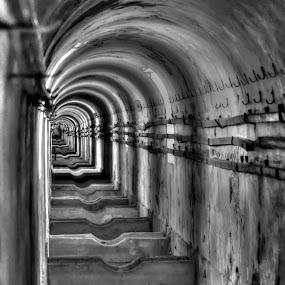 Old Tunnel by Eugénio Buchinho - City,  Street & Park  Vistas