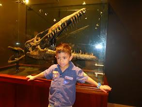 "Photo: Grant said this was Titanosaurus, from the Godzilla film ""Terror of Mechagodzilla""."