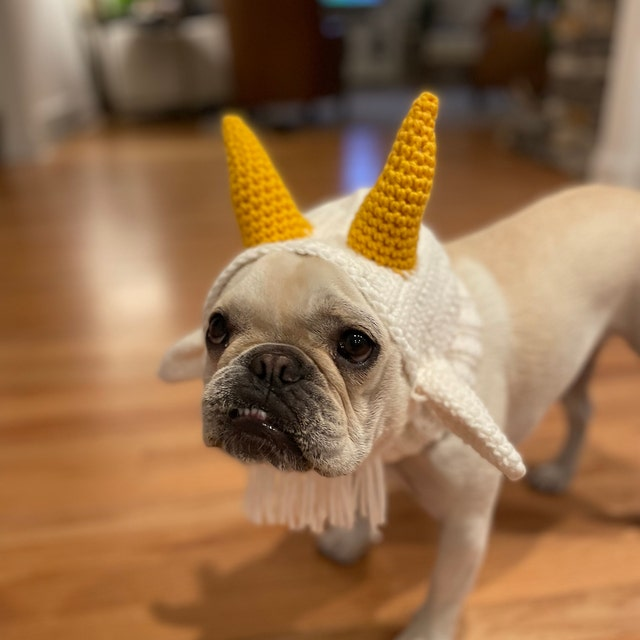 Dog in a goat Halloween costume