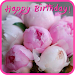 Happy Birthday Cards for Facebook APK
