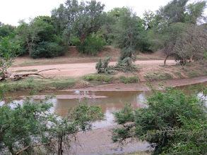 Photo: Kruger National Park. Pafuri Picnic Site
