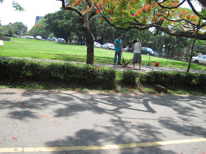 Photo: Tunghai freshman sweep the campus every morning with traditional bamboo brooms