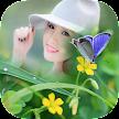 Butterfly Photo Frame 2016 APK