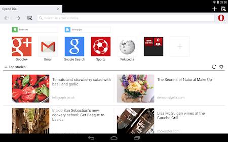 Opera Mini beta web browser 11.0.1912.94373 screenshot 6956