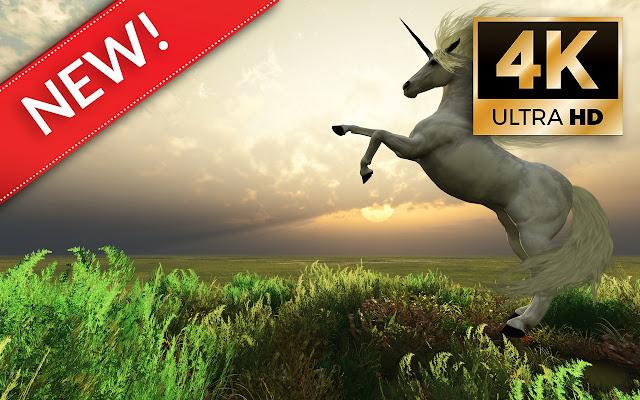 Unicorn Wallpapers HD/4K Unicorn Themes
