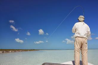 Photo: Fish on! Andros Island Bonefish Club