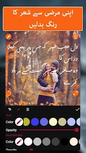 Urdu text on picture: Urdu Shayari & status maker 4