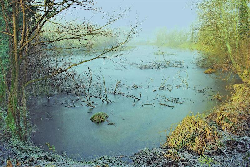 Un lago che per gelo avea di vetro e non d'acqua sembiante di Daimon