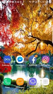 Autumn Photo HD Wallpaper Beautiful Tree Nature 1.2 Android APK Mod 2