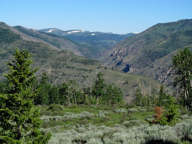Left Fork of Huntington Canyon