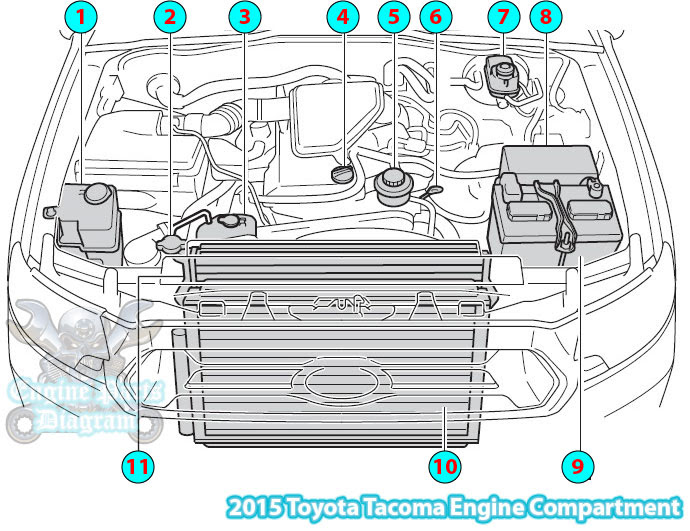 2015 toyota tacoma engine compartment parts diagram (2tr-fe)  engine parts diagram