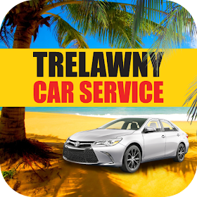 Trelawny Car Service