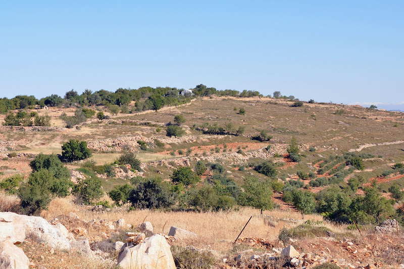Photo: The white tent on the top of the hill, seen from the roadblock on the road to the farm, belongs to the compound of 'Tent of Nations'