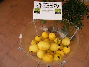 Photo: Menton is well known for its citrus output, and hosts its well-known Lemon Festival every February - a multi-week party of music, dancing, and parades. These Menton lemons are 1 euro each (about $1.40), but are guaranteed to weigh at least a half-pound.