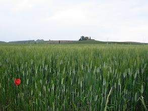 Photo: Nächste Etappe: Unverkennbar typisch Toskana.