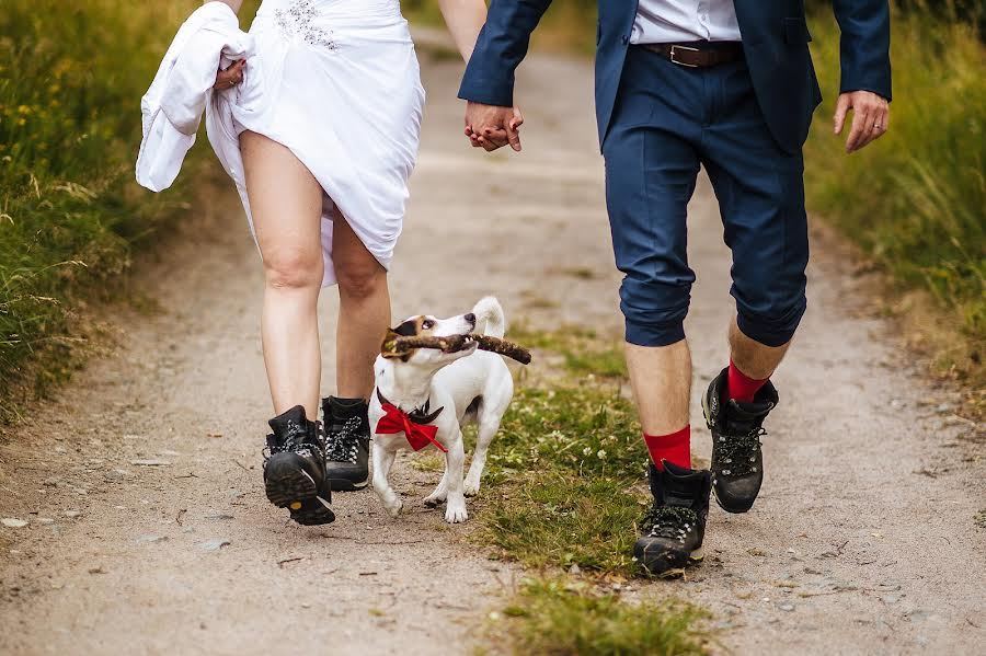 Wedding photographer Petr Wagenknecht (wagenknecht). Photo of 18.09.2015
