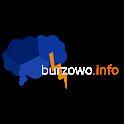 Burzowo.info - Lightning map icon